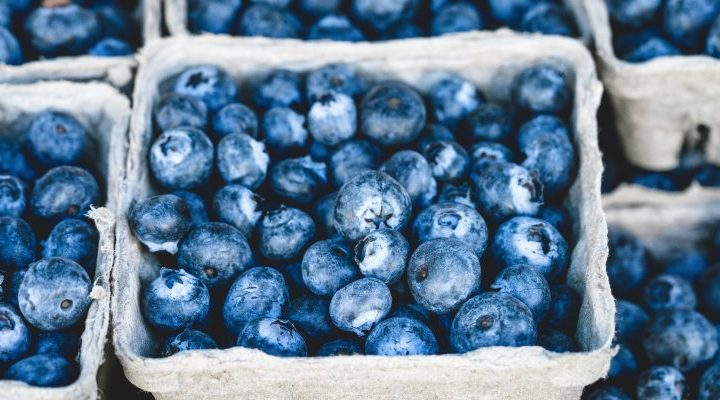 A punnet of blueberries