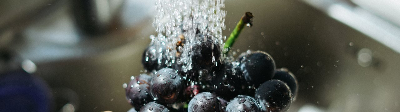 Berries being washed under a tap