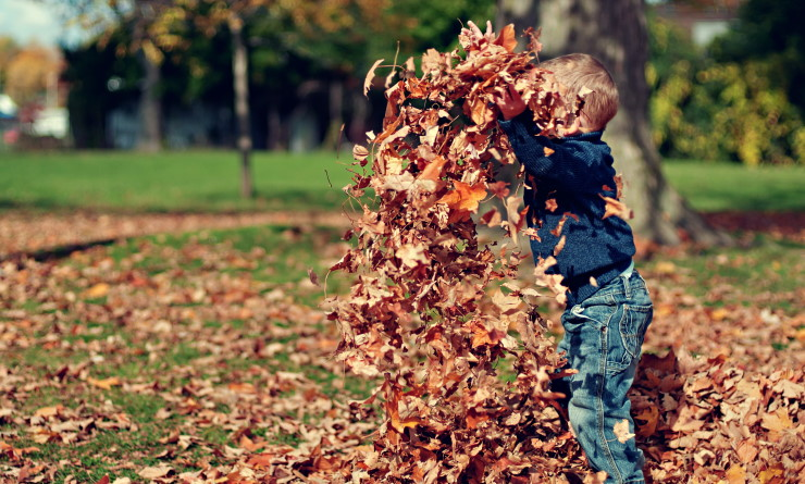 A young boy enjoys some outdoor play time with a pile of leaves